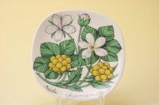 画像2: ARABIA Botanica Rubus Esteri Tomula/アラビア ボタニカ ウォールプレート キイチゴ  (2)