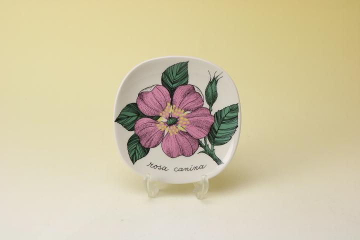 画像1: ARABIA Botanica Rosa  Canina/アラビア ボタニカ ウォールプレート ドッグローズ (1)